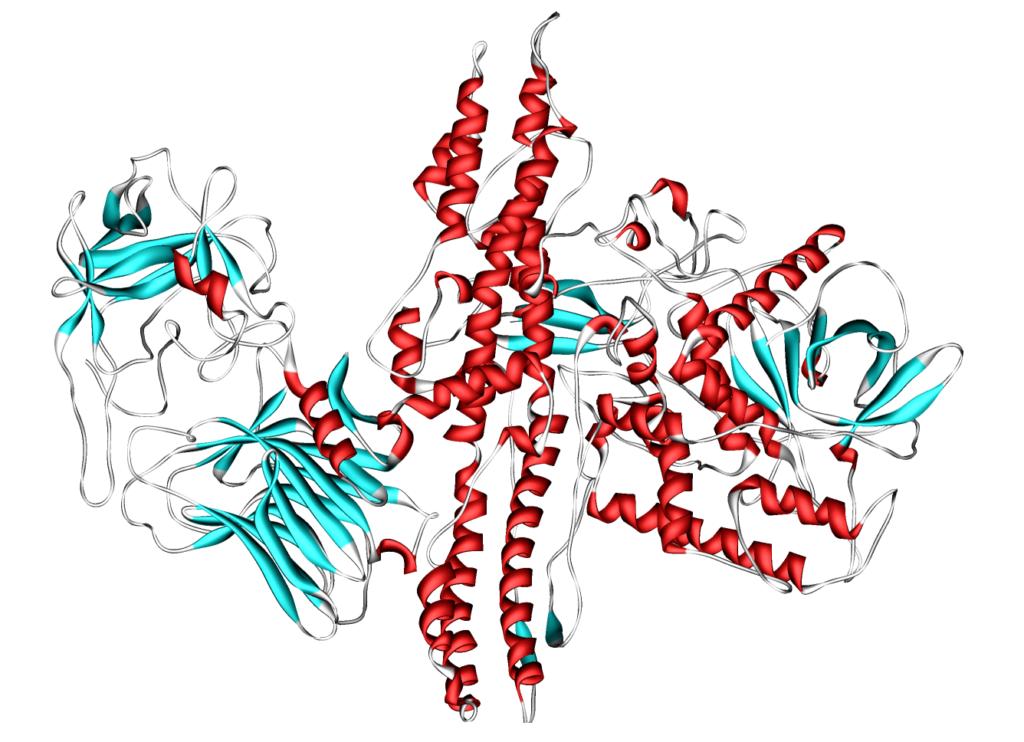 Ботулотоксин — особый белок