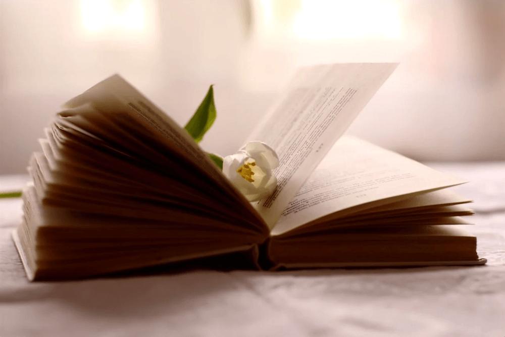 Лучшие книги о путешествиях для женщин